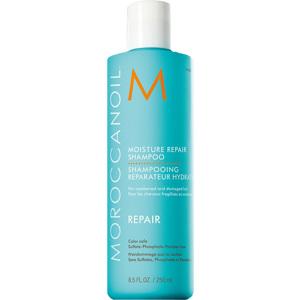 Moisture Repair Shampoo