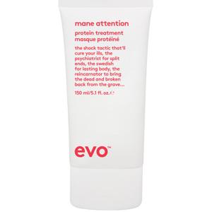 Mane Attention Protein Treatment, 150ml